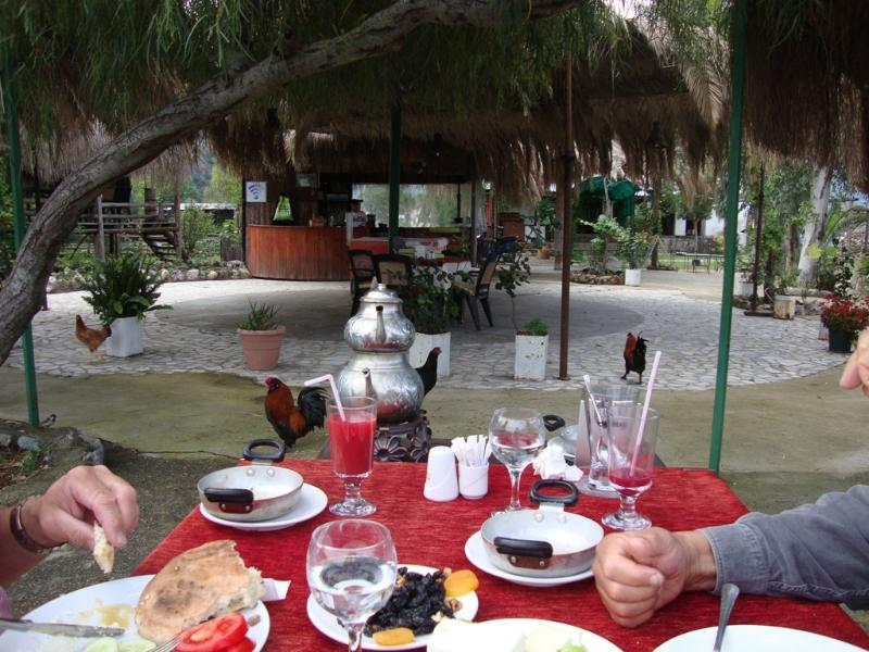 Free Turkish Breakfast on Day1 of your holiday; relax, unwind, feed the river turtles while you eat.