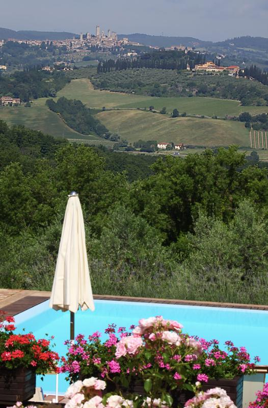 The view of San Gimignano from 'Podere il Pino'...