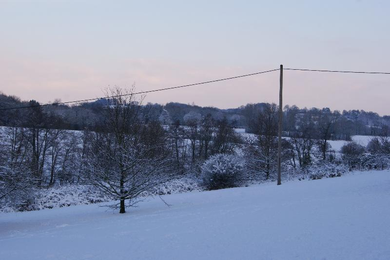 Winter Wonderland - view of the grounds from Apartment