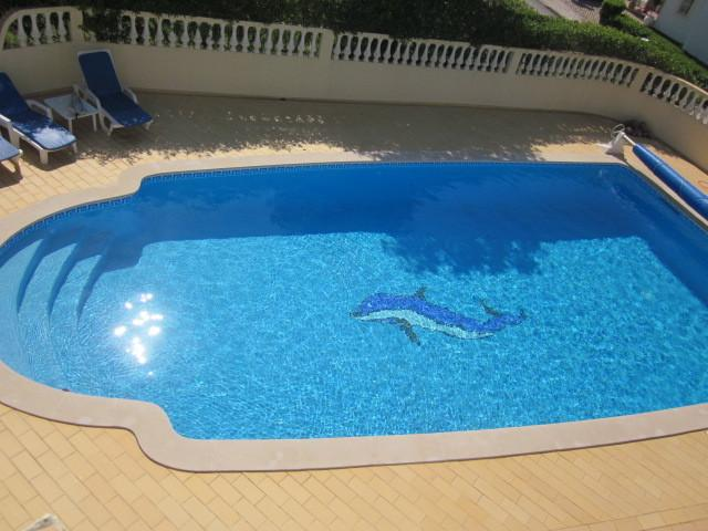 Large Pool with Dolphin