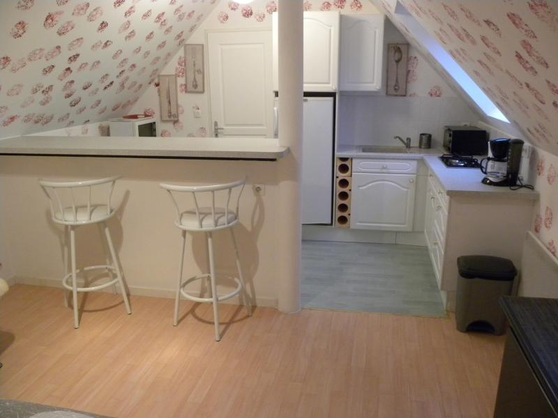 Appartement en Touraine, vacation rental in Sarzay