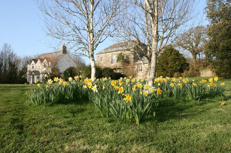 Garden in April 2014