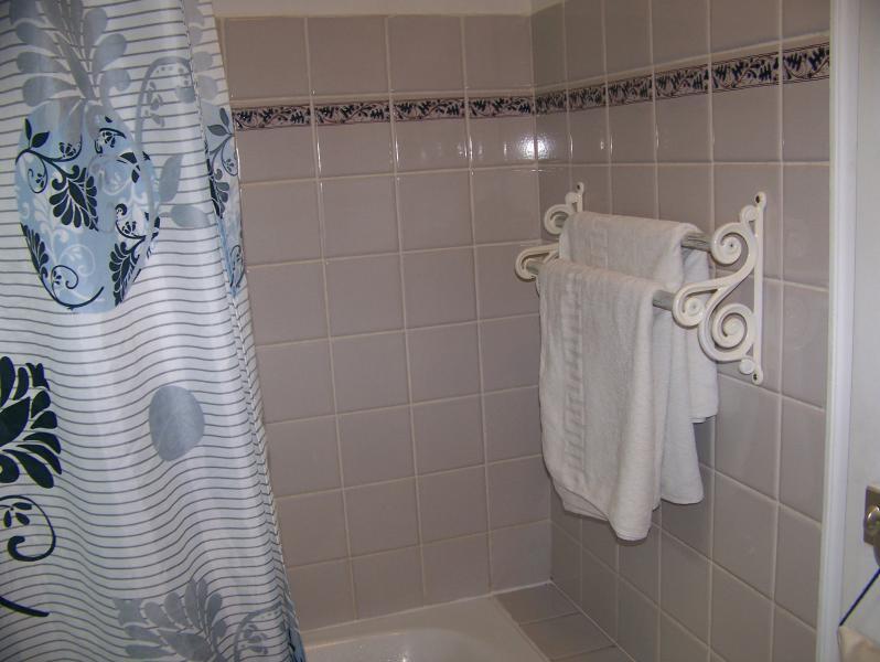 baignoire avec linge de toilette fourni