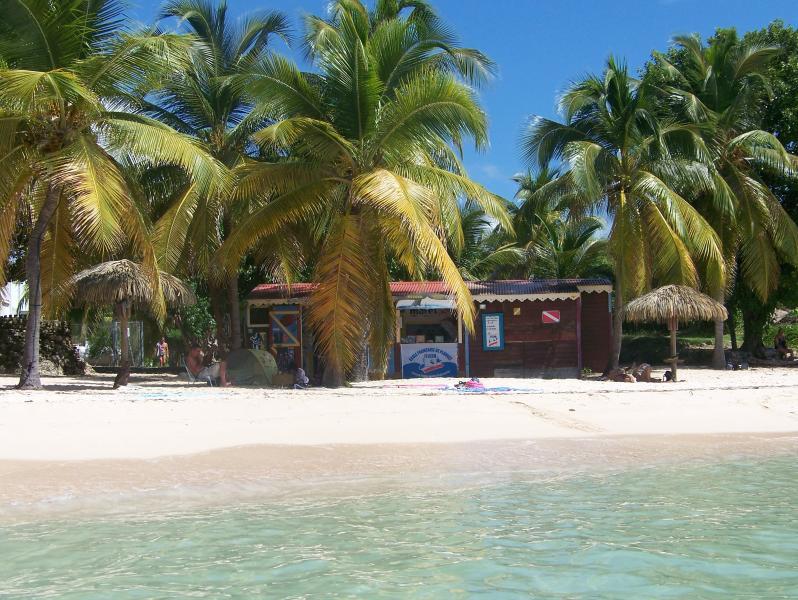 club de plongée sur la plage de l'anse des rochers