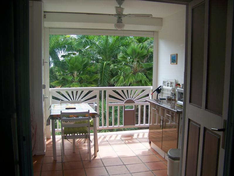 vue de la cuisine vers terrasse