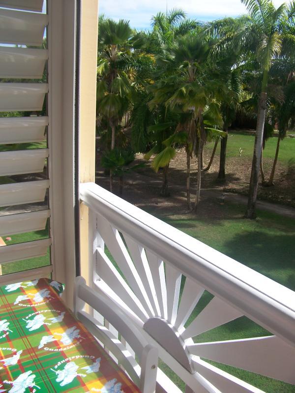 vue du balcon coté mer vue sur les palmiers