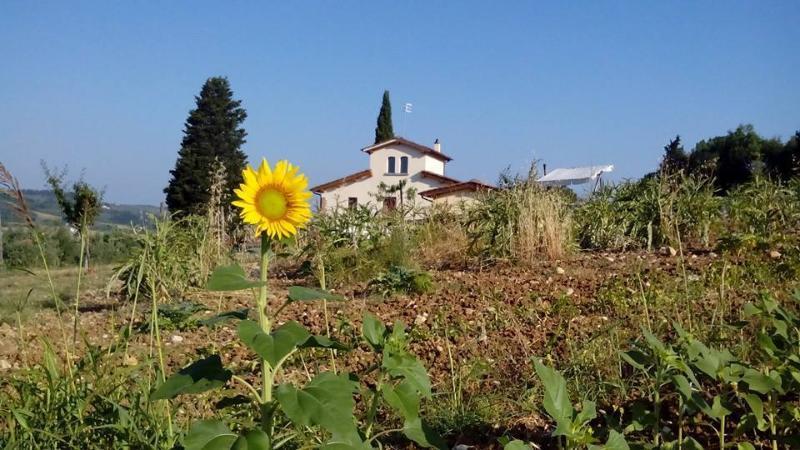 Casale le Lame Colorino, vacation rental in San Casciano in Val di Pesa