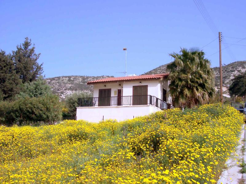 Bungalow in spring