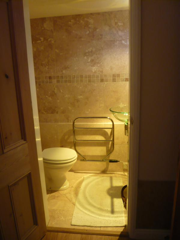 Downstairs ensuite toilet