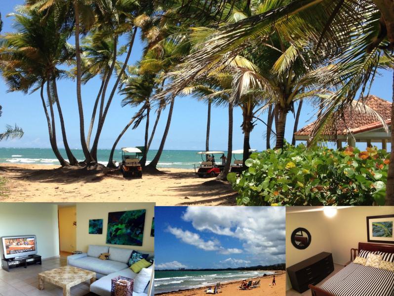 Beach club, apartment living room etc