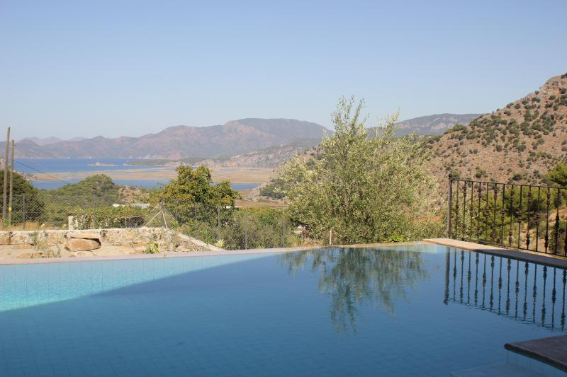 Infinity pool and view