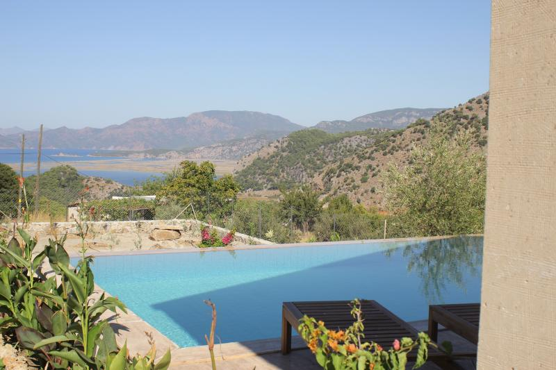 The pool and beyond