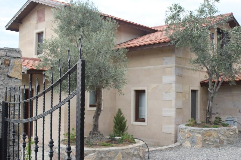 The front with olive trees