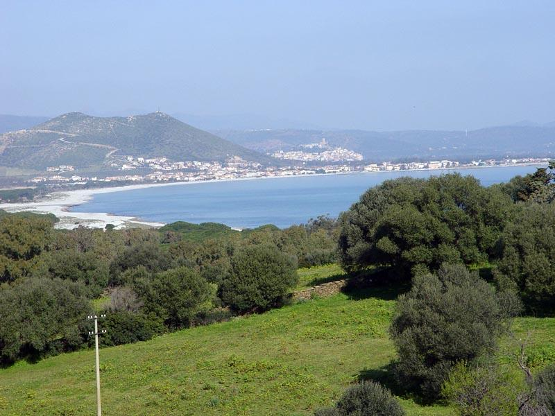 panoramic view of beach and pine forest sa petra ruia