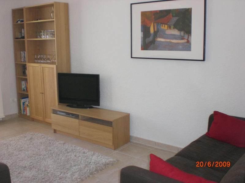 Modern and bright living room with LCD TV, DVD player and sofa bed