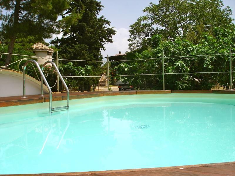 piscina y madera de pino