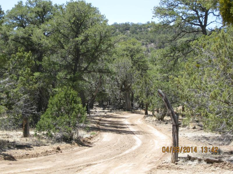 Back Road to Ranch House