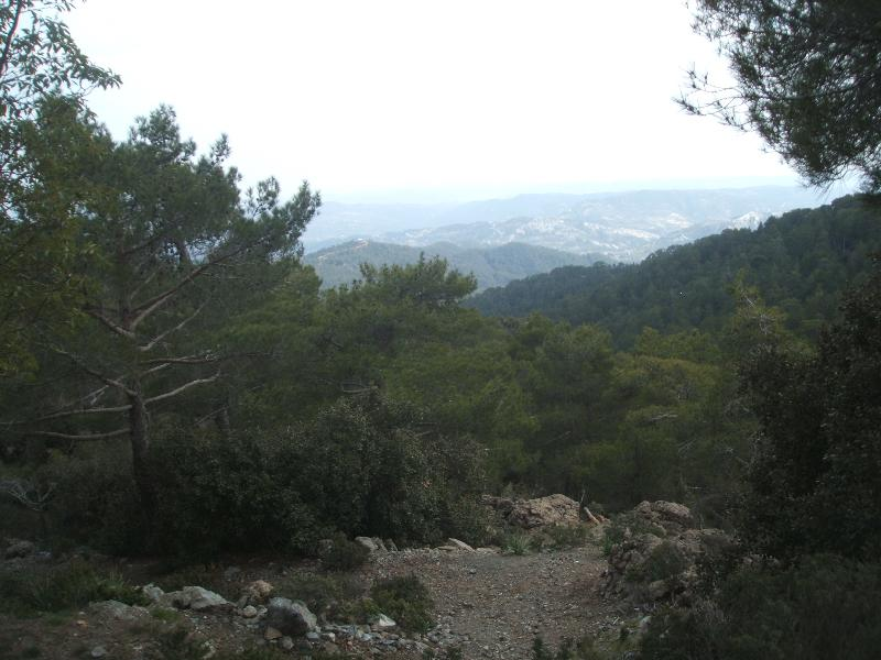 Troodos Mountains within 2 hours' drive, offers walking, skiing and camping