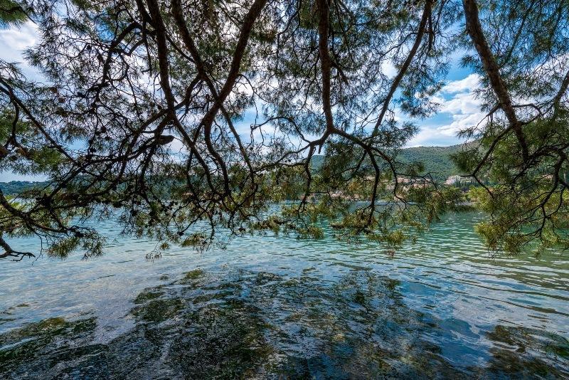 Lugar tranquilo bajo los árboles para nadar y tomar sol en Zaton Mali