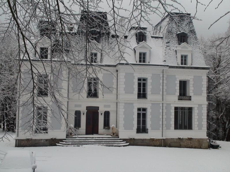 Les Fougères sous la neige de Normandie