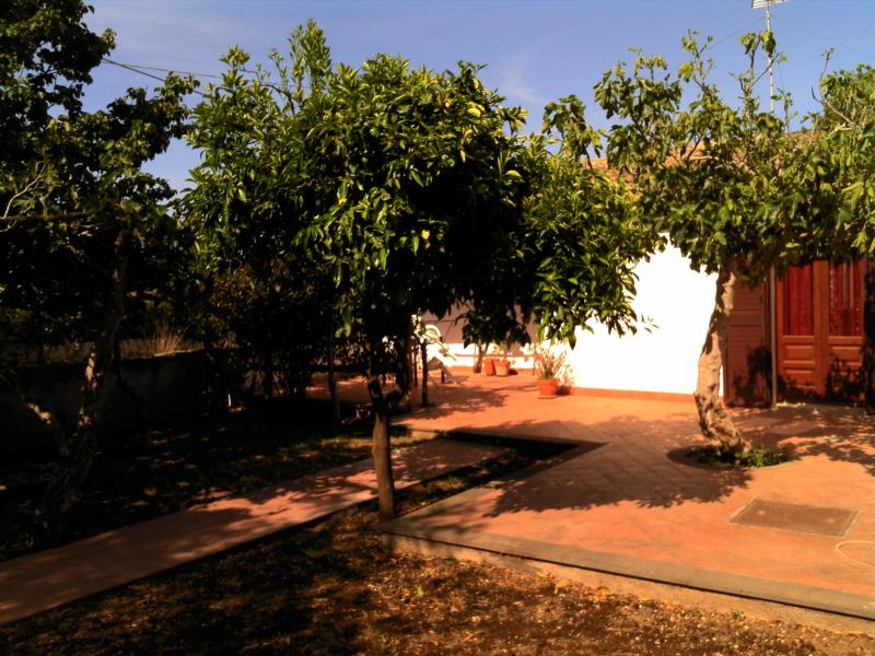 Terrace and Fruit Trees
