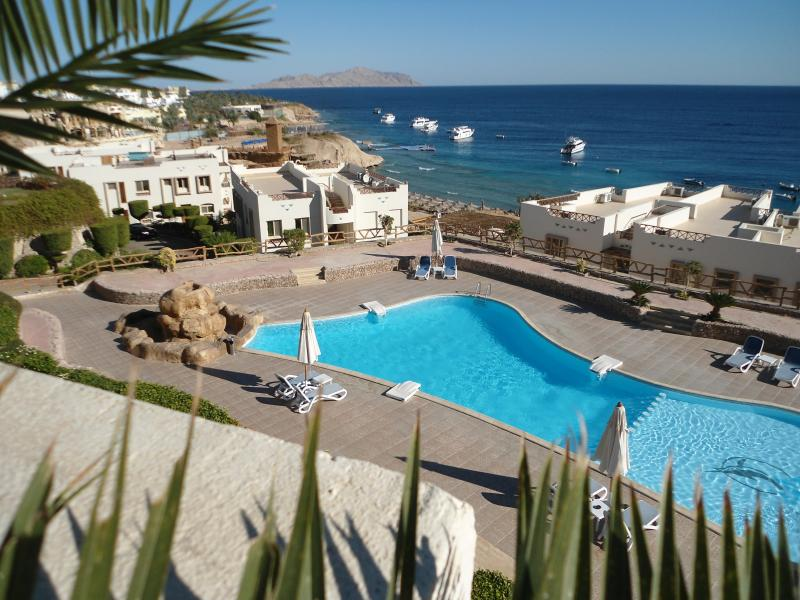 View from our roof terrace with Tiran Island in the background