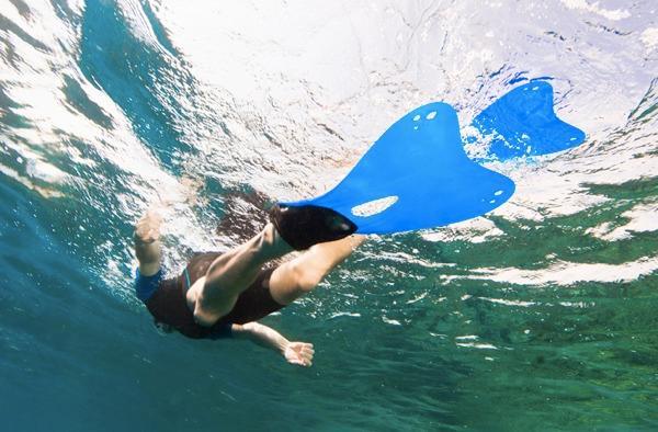 Plongez dans le parc national marin des calanques