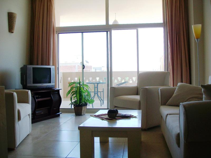 elegant apartment with large balcony