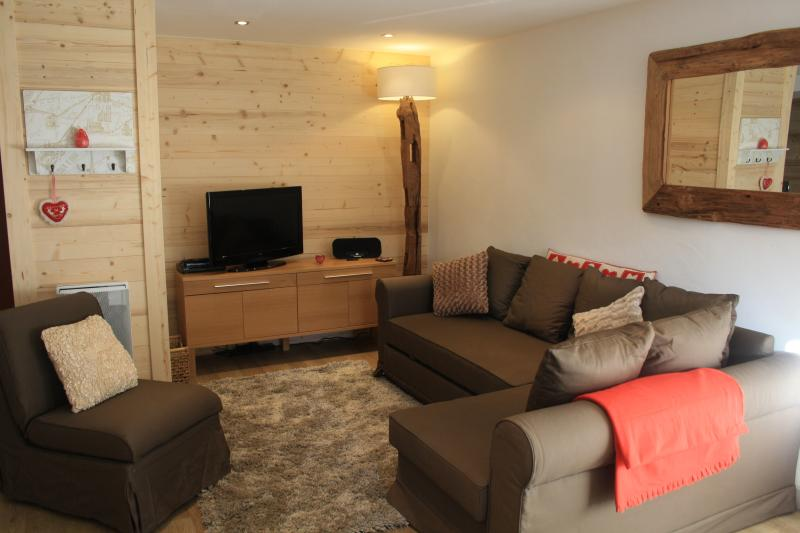 lounge area with queen size pullout sofa bed