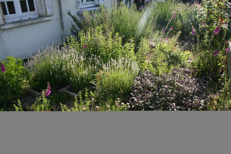 Well stocked Herb Garden