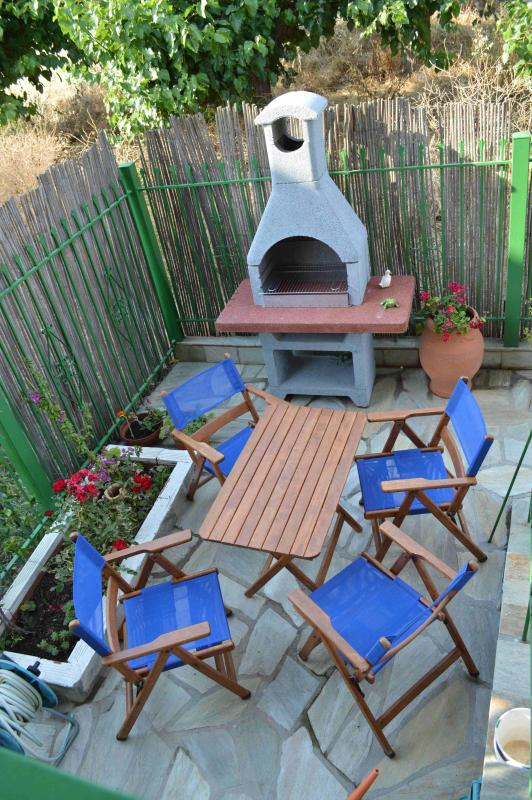 Spacious Back Yard with Barbecue available!