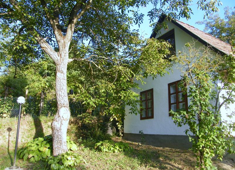 Relaxing holiday for individualists and nature lovers, vacation rental in Hogyesz