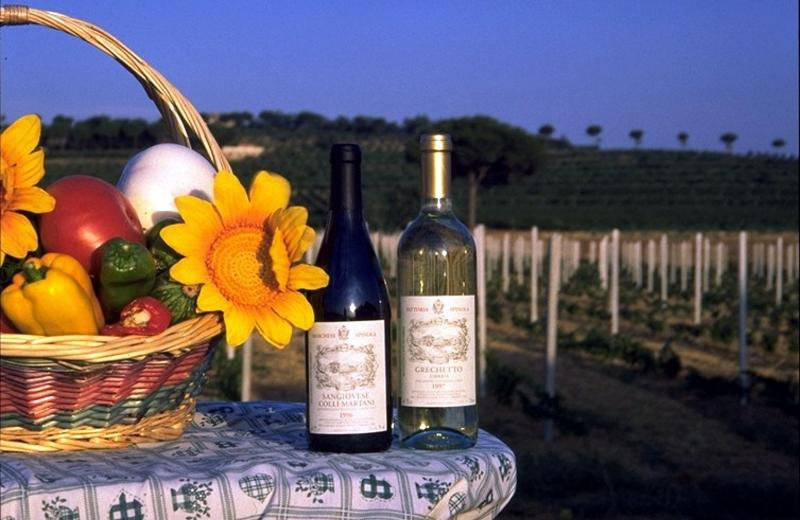 free welcome basket with breakfast and wine; free organic veg garden
