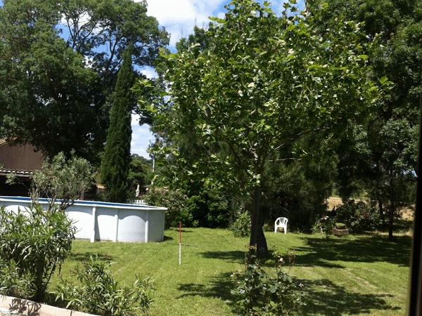 La Bergerie, holiday rental in Moussoulens