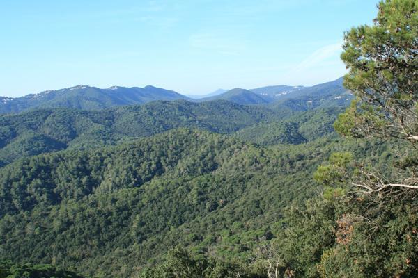 Vues de la propriété, entouré par les merveilleuses montagnes