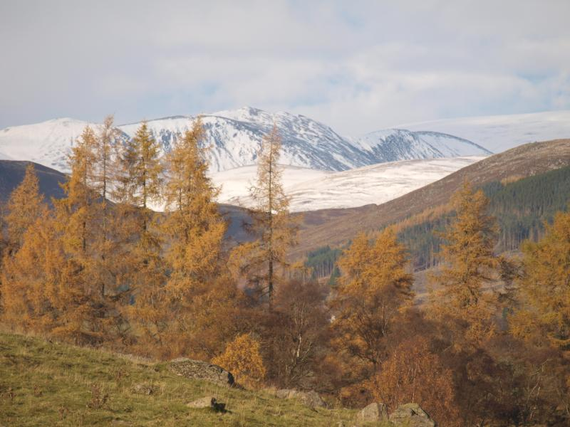 Glenshee - view from Dalnoid looking north towards the Cairngorms National Park