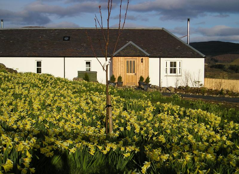 The Groose Hoose in spring-time - sleeps 4, private hot-tub, free wifi, wood-burner, stunning views