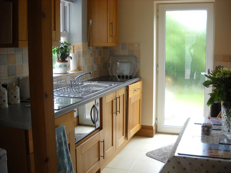 Cwrt Y Cadno, holiday rental in Llandyfaelog