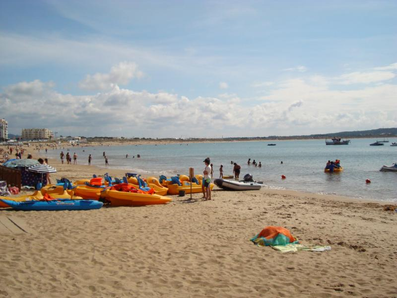Beach with paddle boats for hire