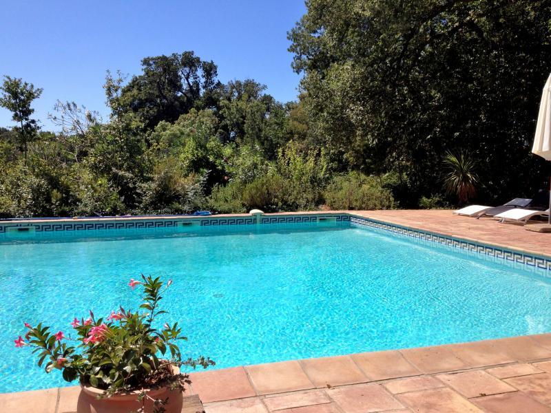 piscina aquecida principal do castelo hermitage de combas