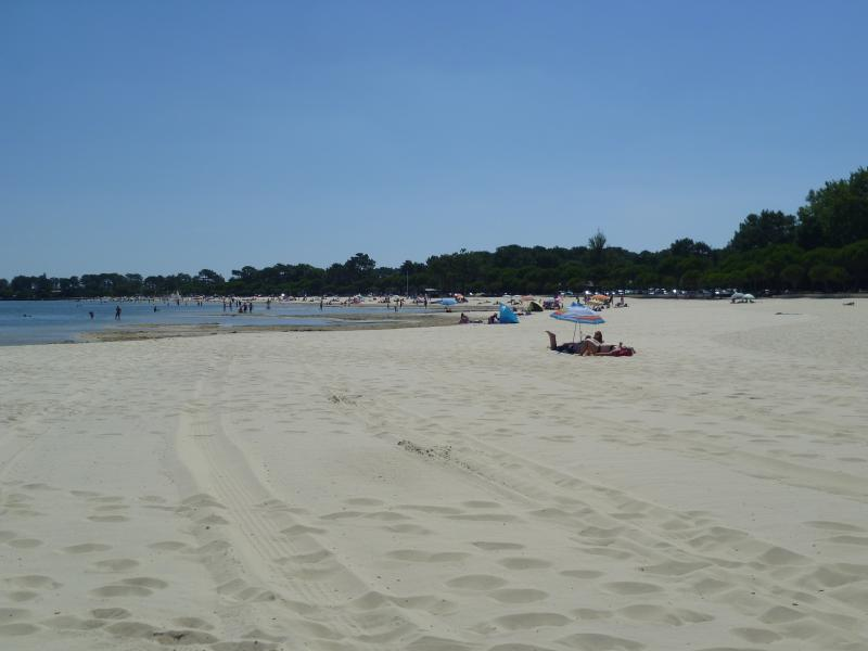 Beach looking east - taken on 11th August