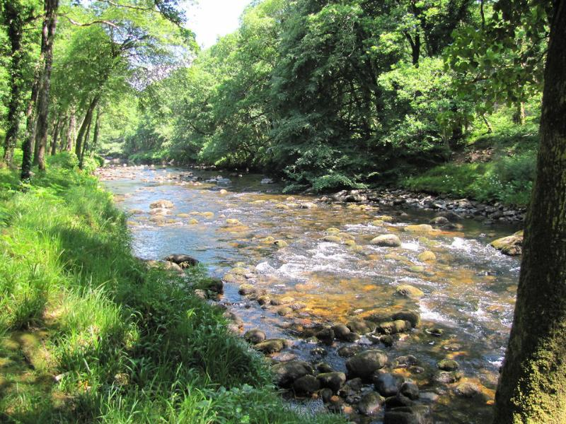 A beautiful stretch of the River Dart passes through the grounds below the cottages