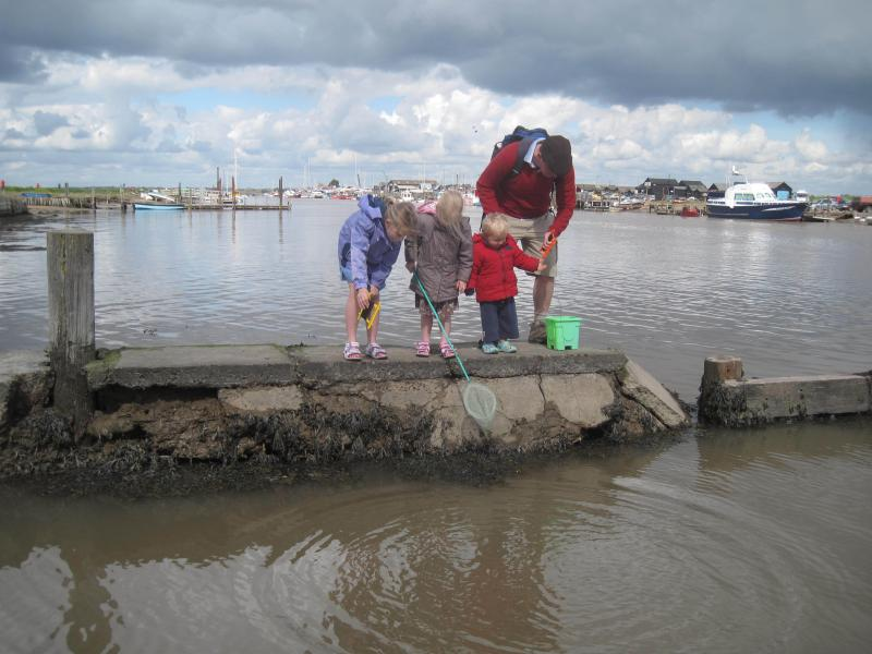 Catching crabs at Walberswick harbour (south of Pakefield)