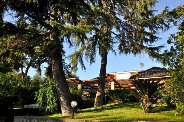 Valery's House- DELIZIOSO APPARTAMENTO IN VIL, alquiler vacacional en Ponte Galeria