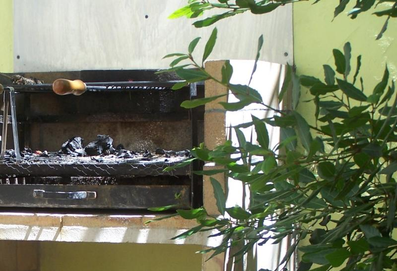 Large BBQ next to the herb garden