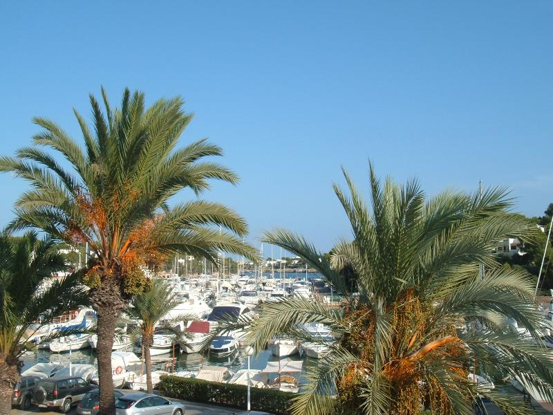 View of the Marina from the Apartment