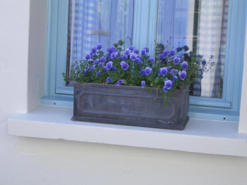 Pretty window boxes decorate the front of the house