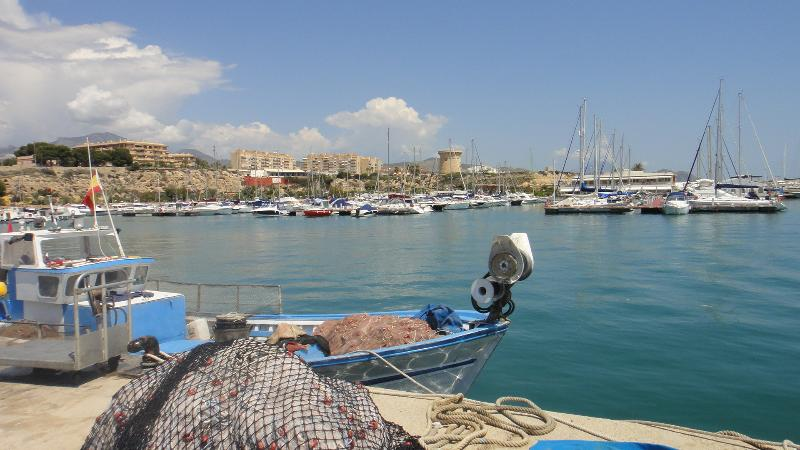 Fishing boats in the stunning El Campello Marina near us.