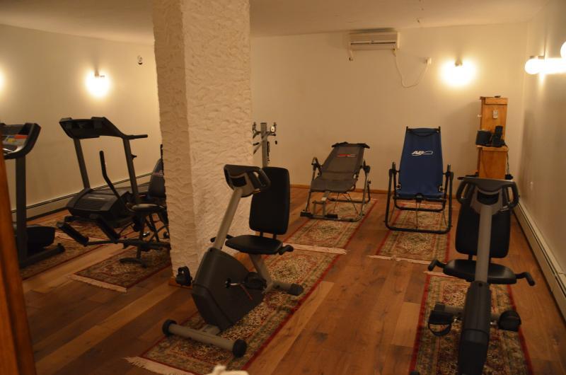 Ermolaos gym room