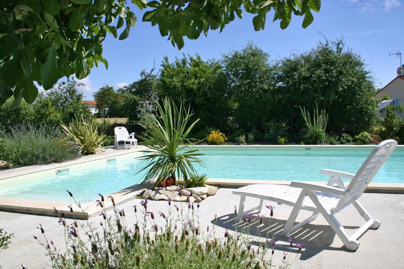 Lovely pool with sun terrace and barbecue